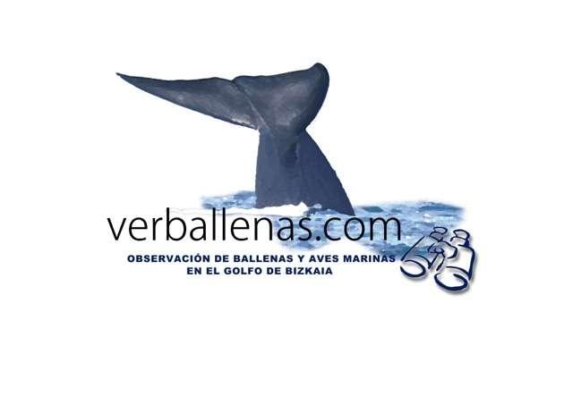Logo_verballenas_2016_2