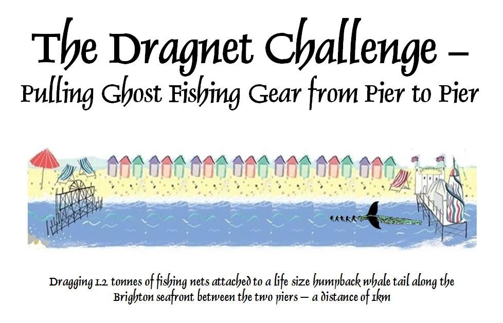 Dragnet Challenge