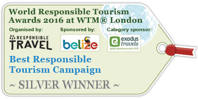winnerTag-bestCampaignSilver