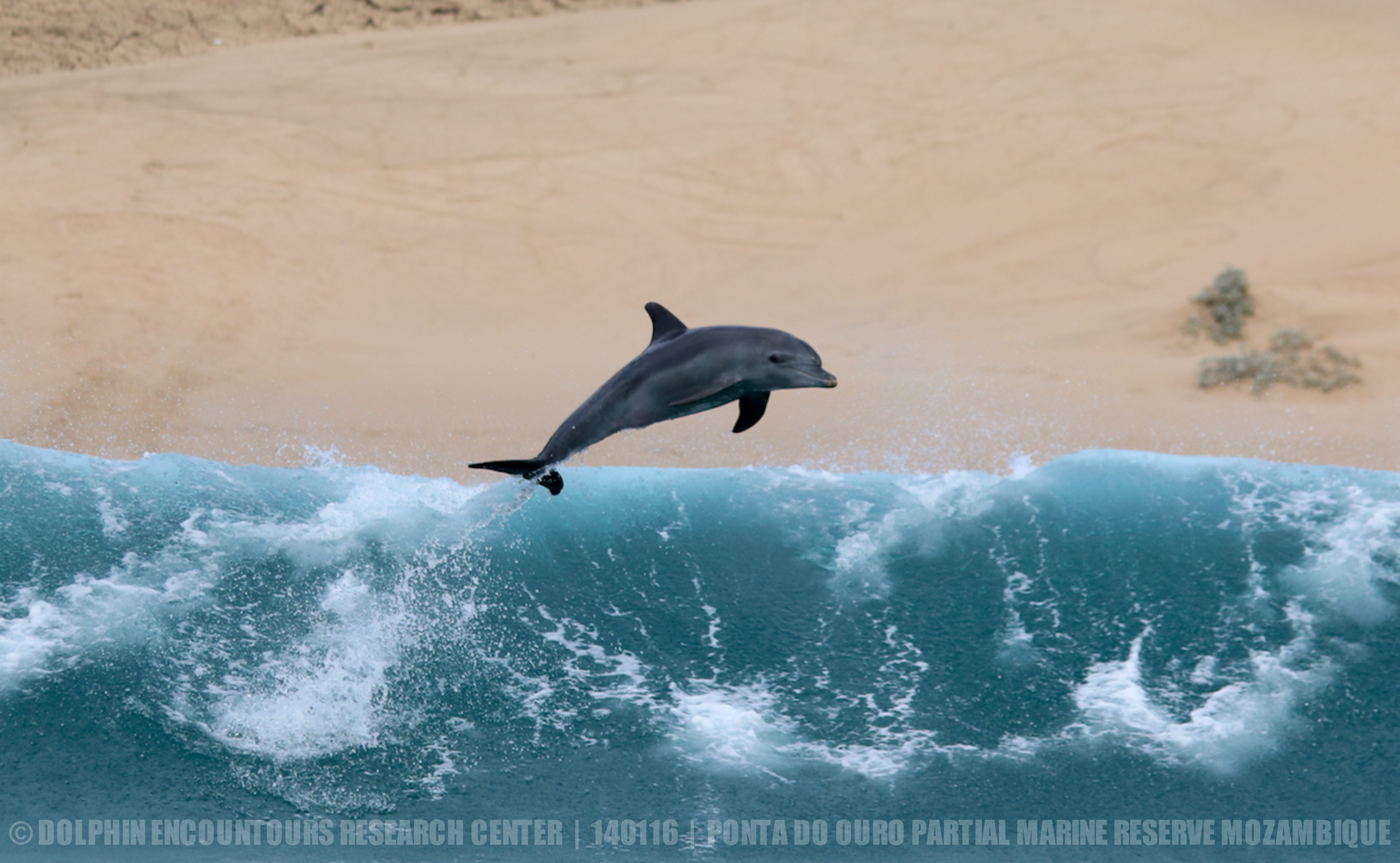 Protecting habitats
