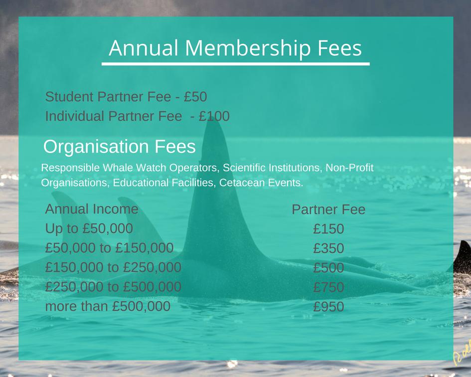 Annual Membership Fees