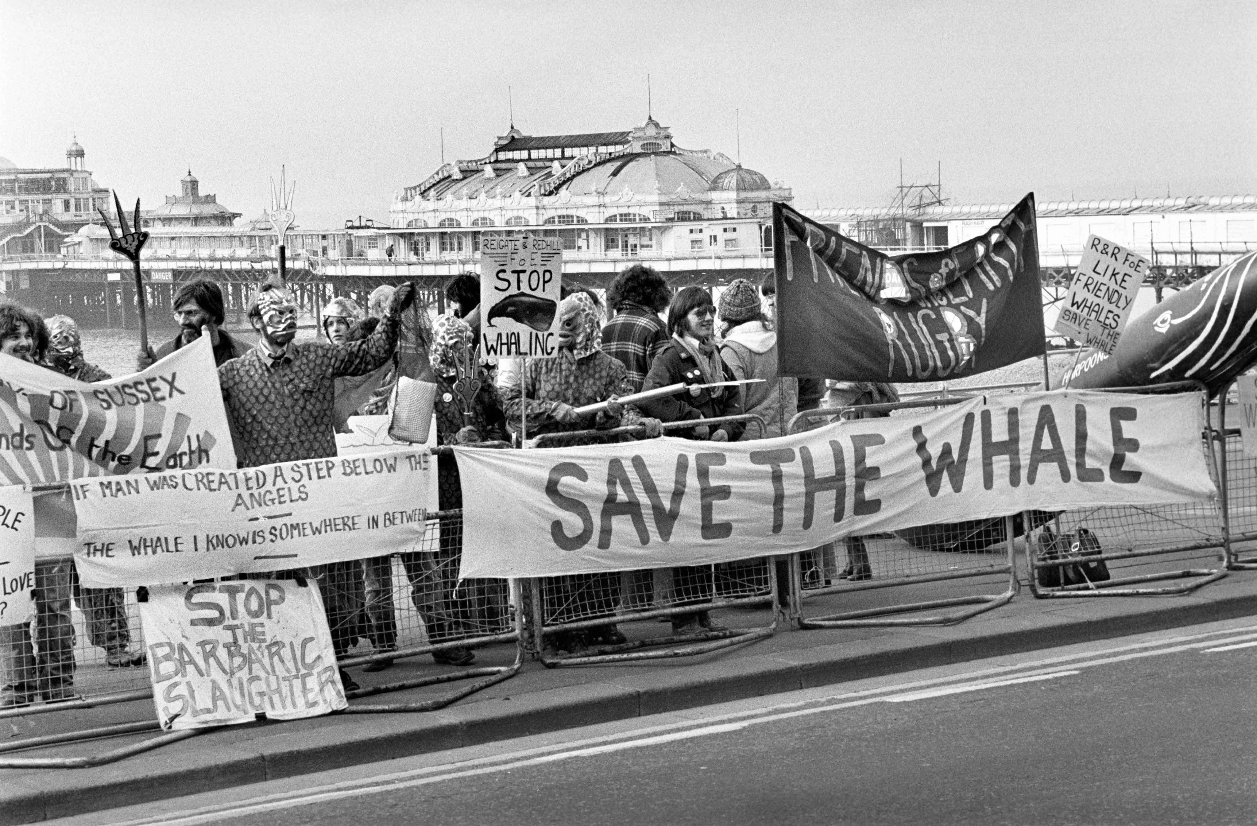 Conservationists from Friends of the Earth dressed as sea creatures demonstrate outside a Brighton hotel where the International Whaling Commission began a two day meeting to set catch limits on sperm whales.