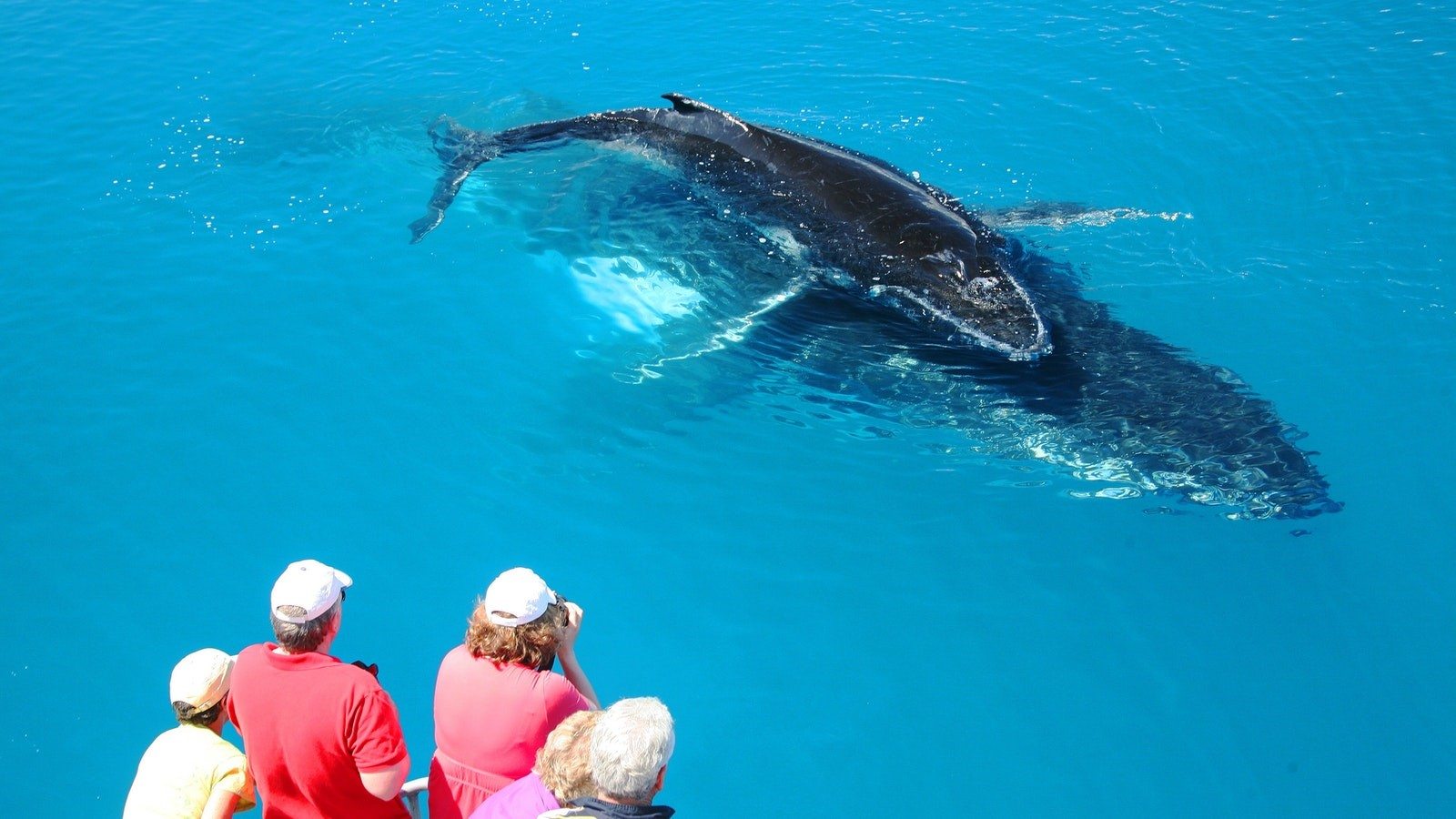 Photo: Fraser Coast Tourism & Events