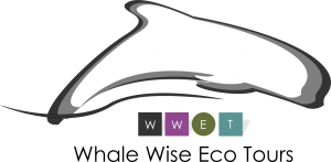 Whale Wise Ecotours logo