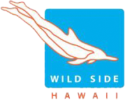Wild Side Hawaii