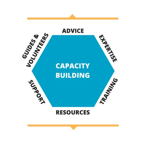 Capacity Building diagram