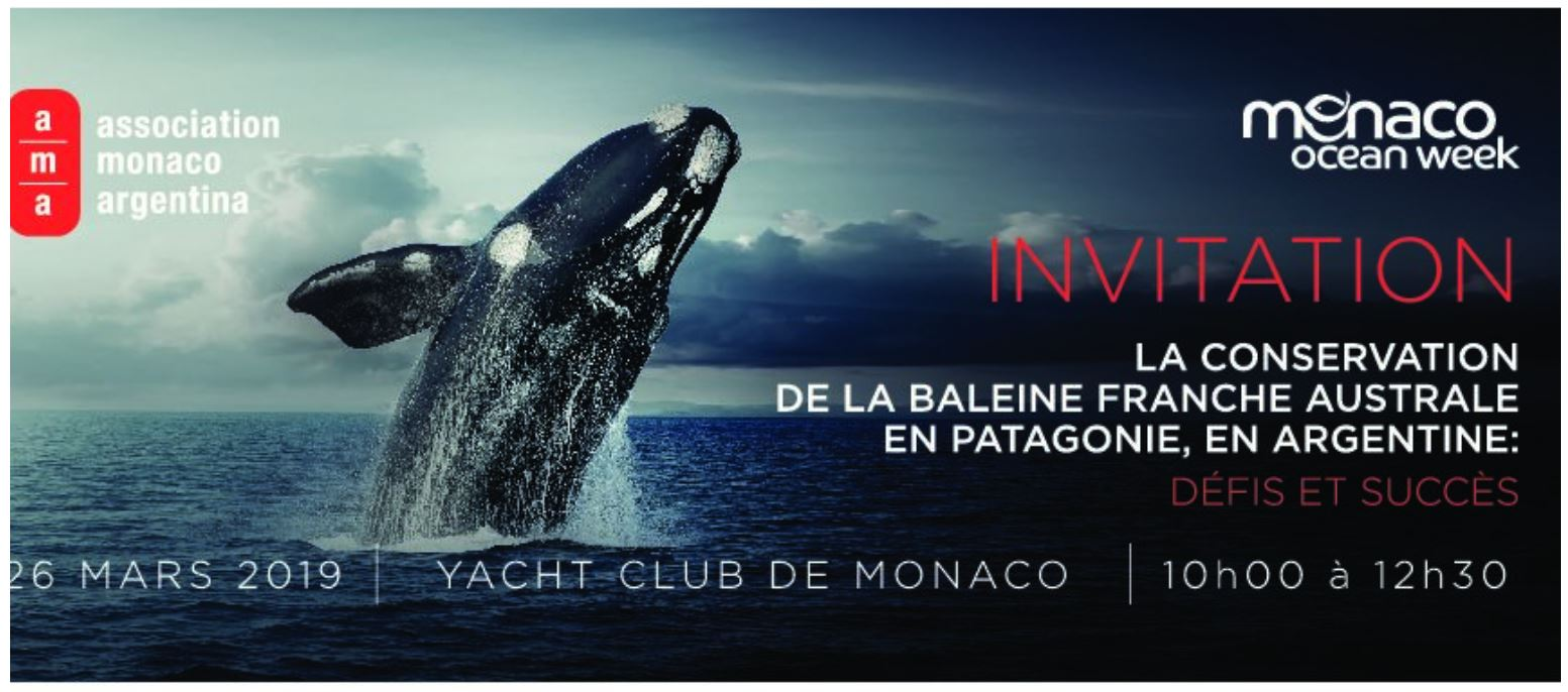 RightWhale_MonacoOceanWeek